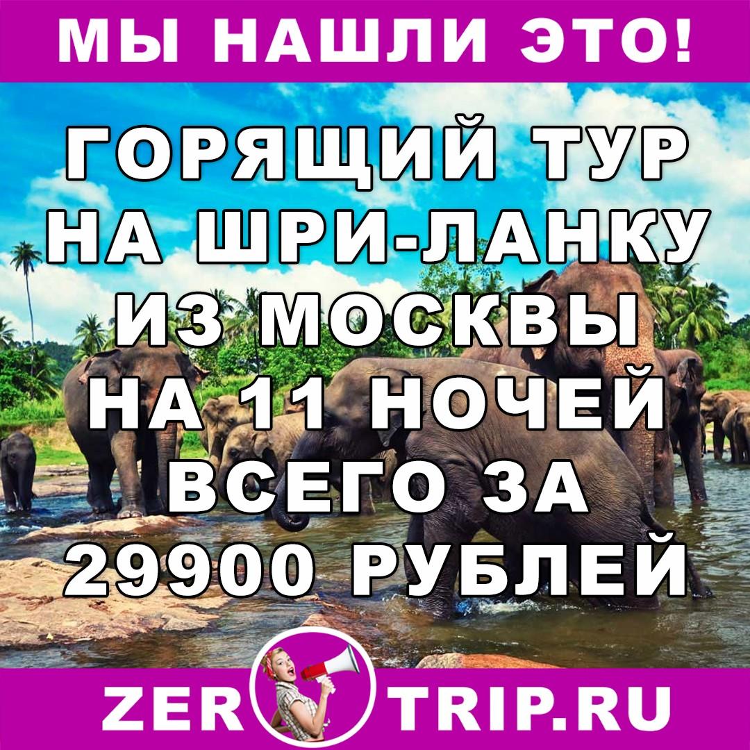 Горящий тур на Шри-Ланку из Москвы на 11 ночей всего за 29900 рублей