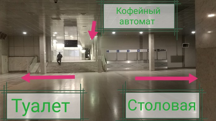 как найти недорогую столовую во Внуково
