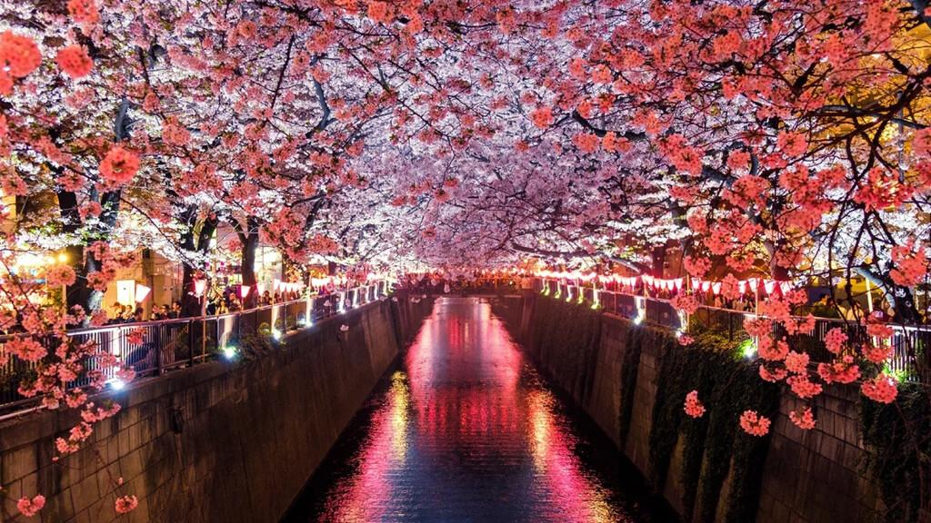 Парк Уэно и квартал музеев в Токио