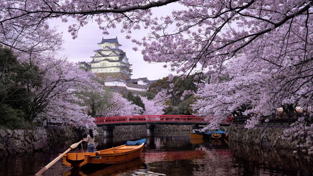 Парк Синдзюку Гёэн в Токио