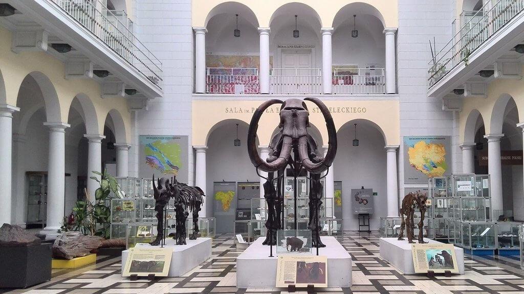Геологический музей Государственного геологического институтав Варшаве