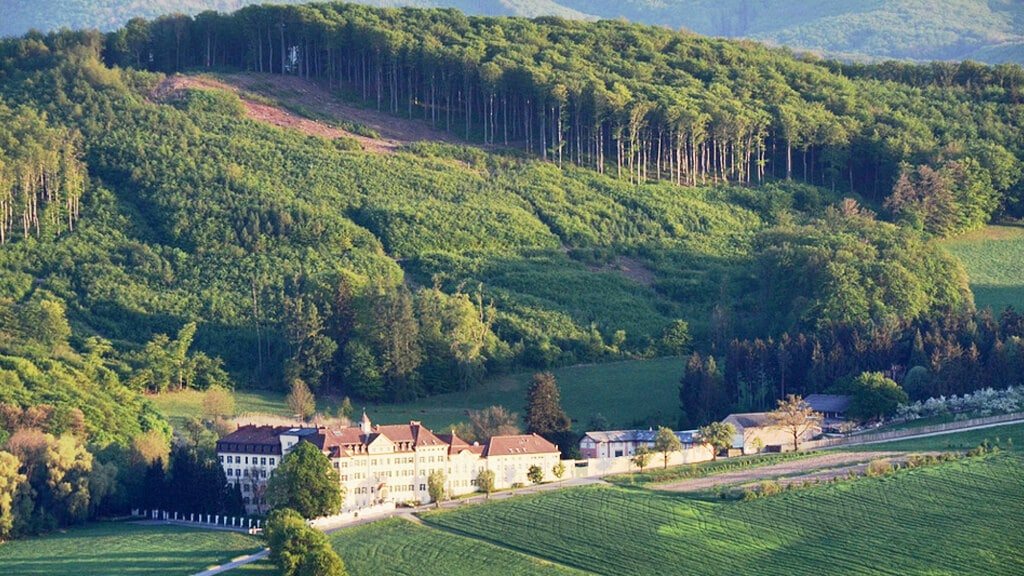 Венский лес в Вене