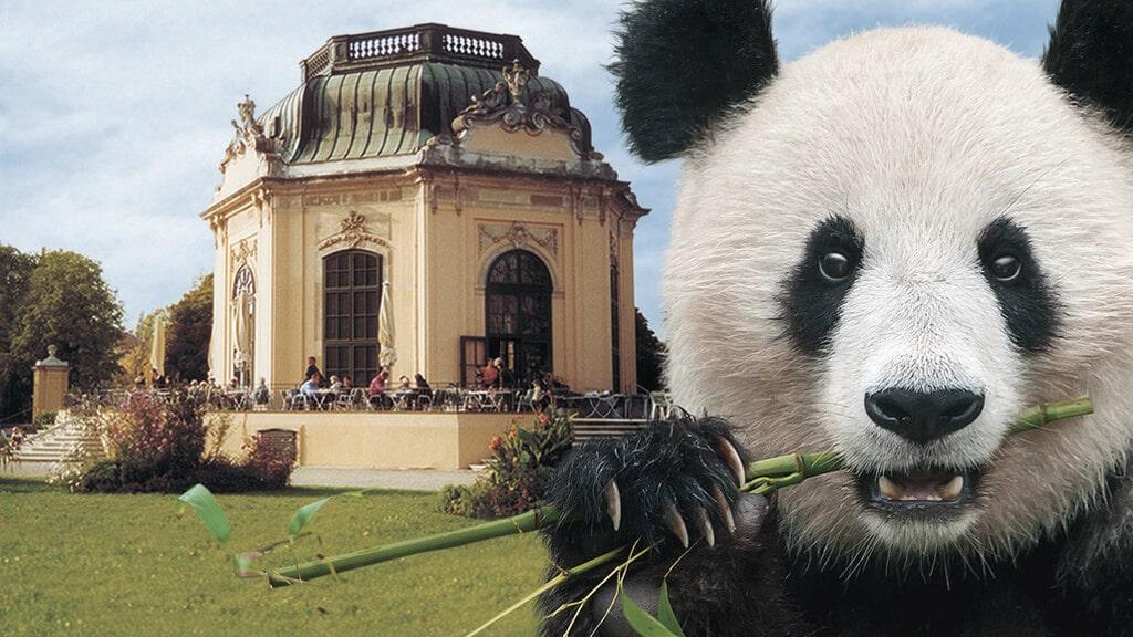 Венский зоопарк в Вене