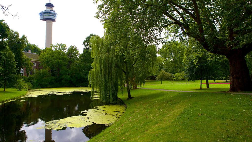 Парк «Het Park» в Роттердаме