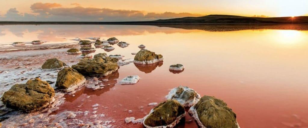 Кояшское озеро – розовый эксклюзив
