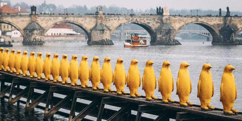 Желтые пингвины в Праге
