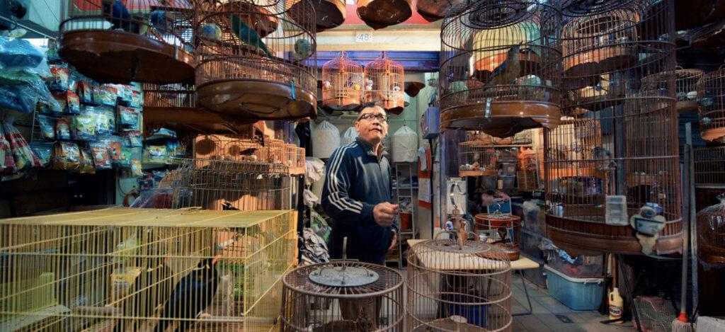 улица Йен По в Гонконге - птичий рынок